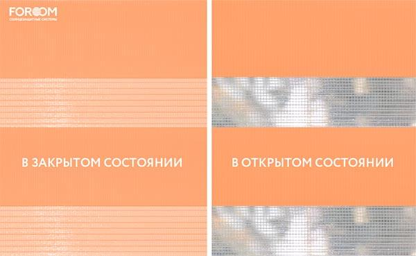 Basic, морковный